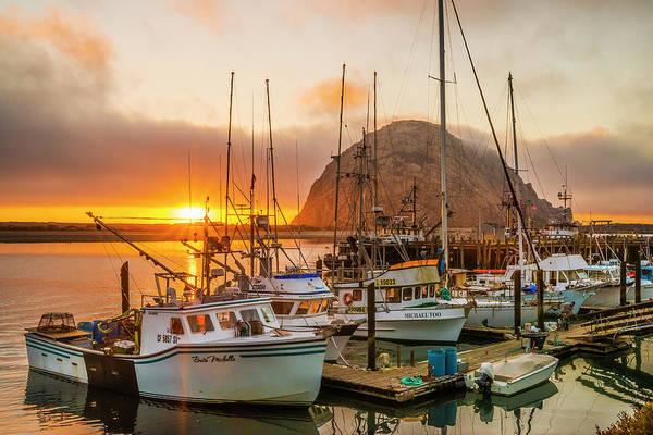 Photograph - Harbor by Fernando Margolles