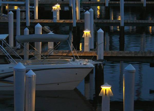 Photograph - Harbor Lights by Perry Correll
