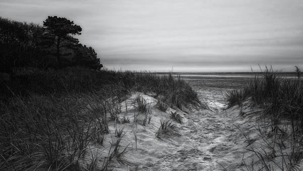 Photograph - Harbor Path by Simmie Reagor