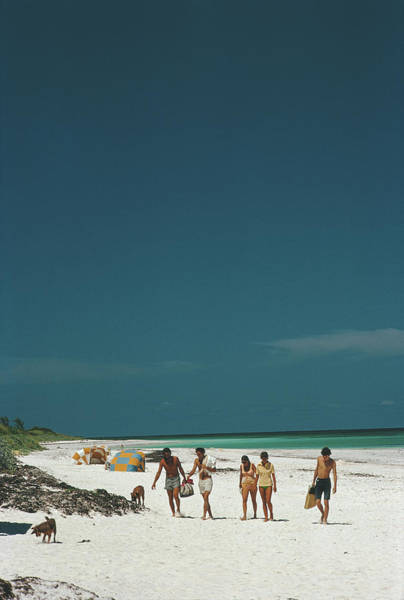 Dog Photograph - Harbour Isle Beach by Slim Aarons