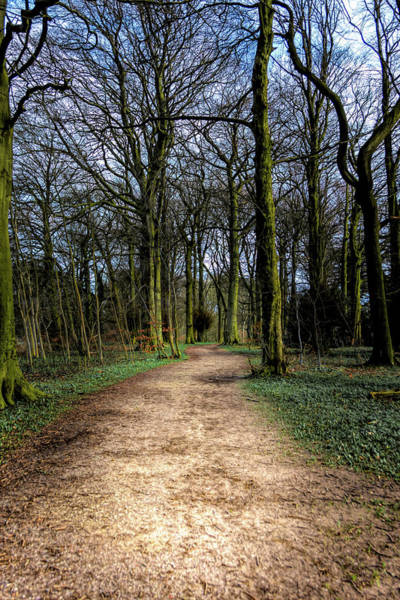 Photograph - Hardwick Hall Lady Spencer's Walk by Scott Lyons