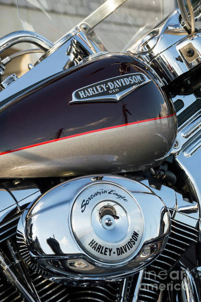 Wall Art - Photograph - Harley Davidson 25 by Wendy Wilton