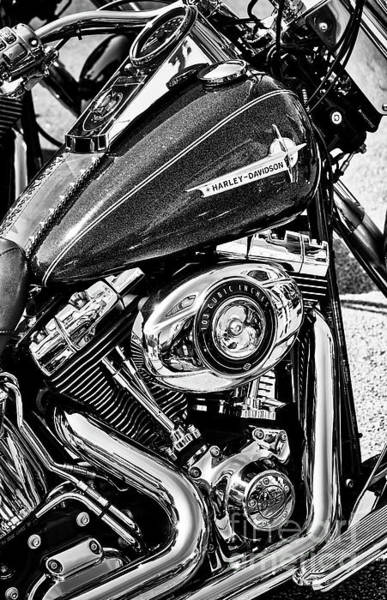 Photograph - Harley Davidson St Deluxe Flstn 103 Motorcycle by Tim Gainey