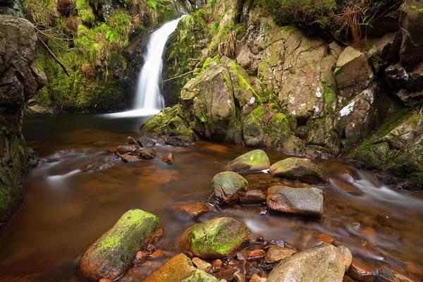 Jason Day Photograph - Harthope Linn, Harthope Valley by Jason Friend