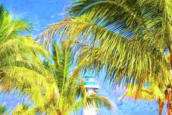 Photograph - Harvest Caye Palms by Alice Gipson