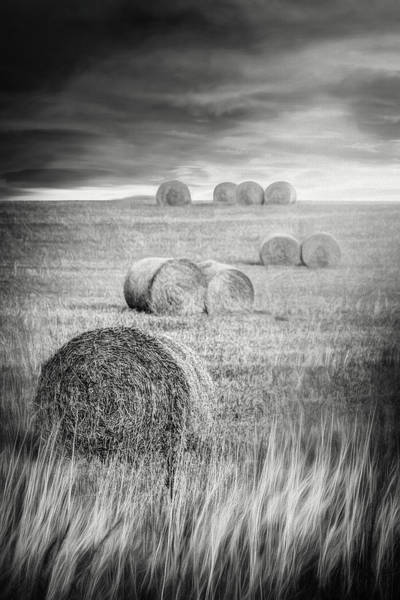 Hay Bale Wall Art - Photograph - Harvest Hay Bales Scotland Black And White by Carol Japp