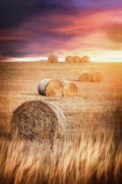 Hay Bale Wall Art - Photograph - Harvest Hay Bales Scotland  by Carol Japp