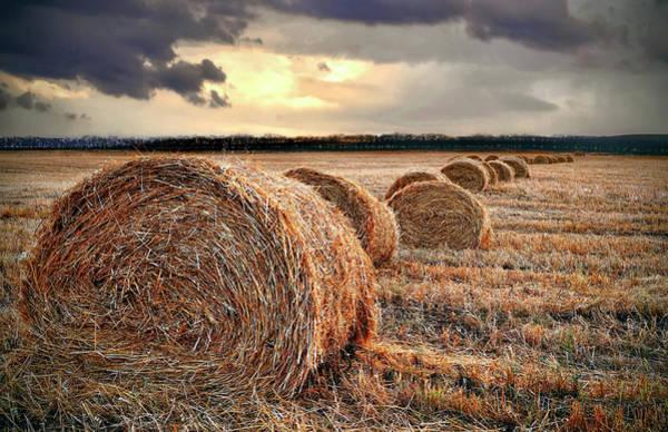 Wall Art - Photograph - Harvest Hay by Daniel Hagerman