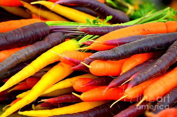 Purple Carrot Photograph - Harvest Of Color by Loretta Bueno