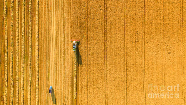 Wall Art - Photograph - Harvester Machine Working In Field by Lals Stock