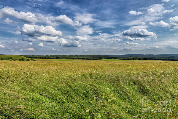Photograph - Harz National Park by Bernd Laeschke