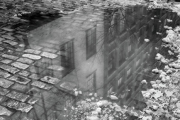 Photograph - Haunting Reflection by Cate Franklyn