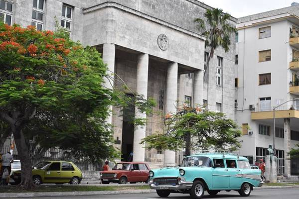 Photograph - Havana by Cassidy Marshall