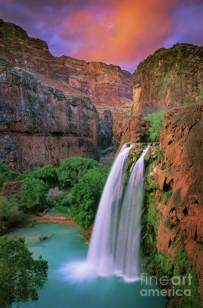 Natural Photograph - Havasu Falls by Inge Johnsson