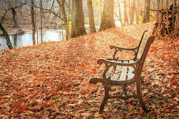 Wall Art - Photograph - Have A Rest by Alexey Stiop
