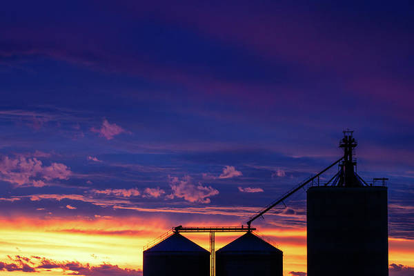 Photograph - Havre Silhouette by Todd Klassy