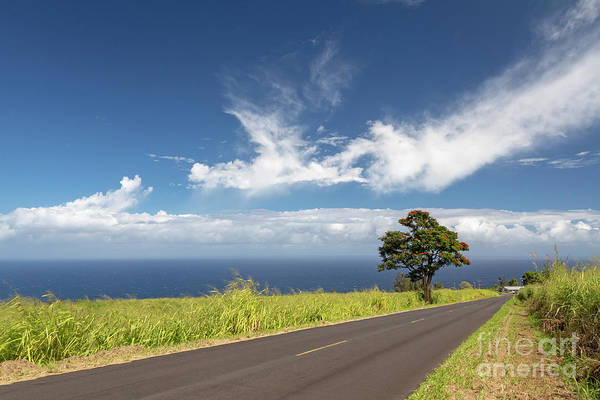 Photograph - Hawaii Highway by Jim West