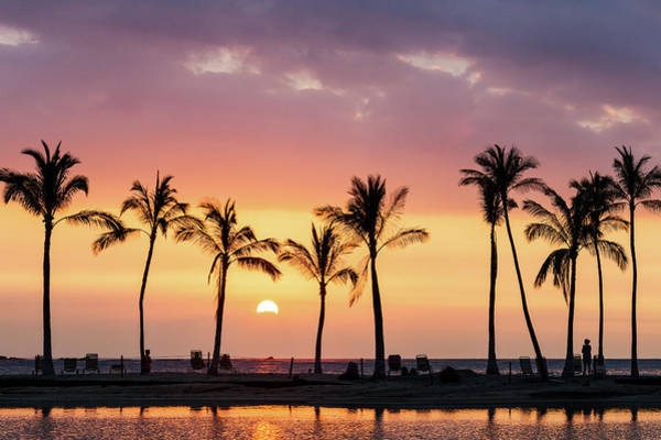 Photograph - Hawaiian Sunset by Nicole Young