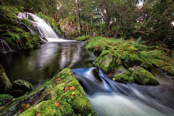 Haweswater Wall Art - Photograph - Haweswater Beck by Phil Buckle