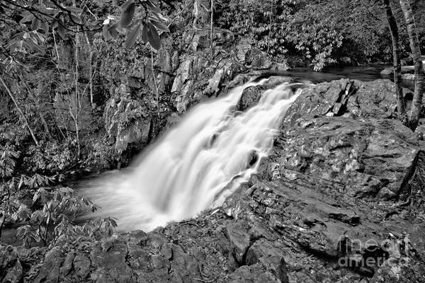 Photograph - Hawk Falls Lush Canyon Black And White by Adam Jewell