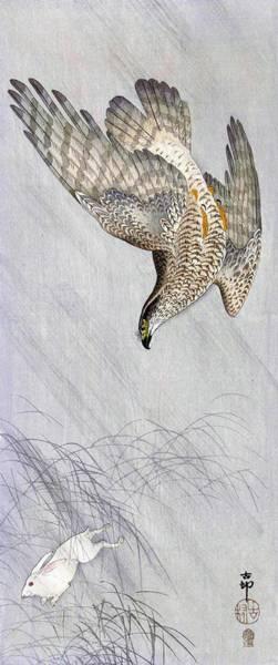 Wall Art - Painting - Hawk Hunting Rabbit - Digital Remastered Edition by Ohara Koson