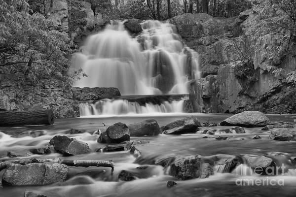 Photograph - Hawk Run Landscape Black And White by Adam Jewell