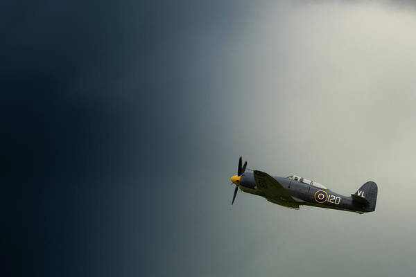 Photograph - Hawker Sea Fury Into The Blue by Scott Lyons