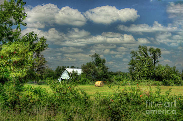 Wall Art - Photograph - Hay Bale In A Field by Larry Braun