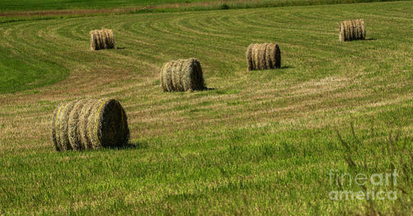 Photograph - Hay Bales In Kalispell, Montana by Michael D Miller