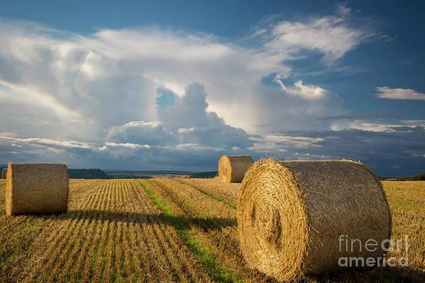 Photograph - Hay Bales In Scotland by Brian Jannsen