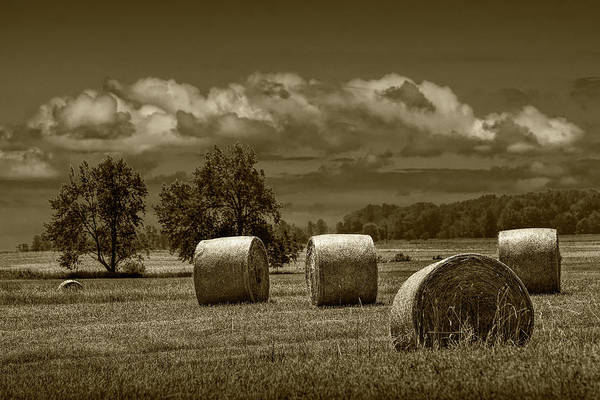 Photograph - Hay Bales On A Harvest Farm Field In West Michigan In Sepia Tone by Randall Nyhof