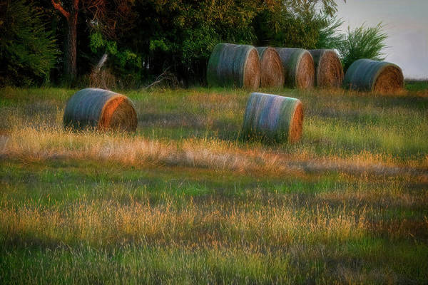 Photograph - Hay Bales by Patricia Cale