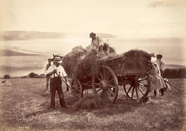 Farm Photograph - Hay Cart by Frank Meadow Sutcliffe