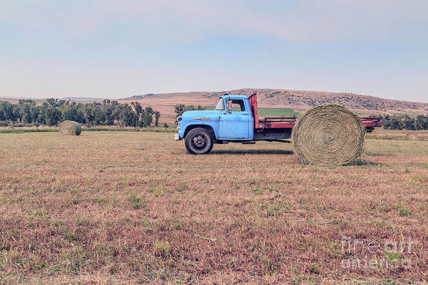Wall Art - Photograph - Hay Harvest Montana by Edward Fielding