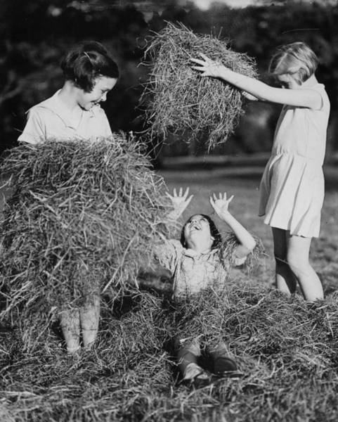 Covering Photograph - Hay Play by Fox Photos