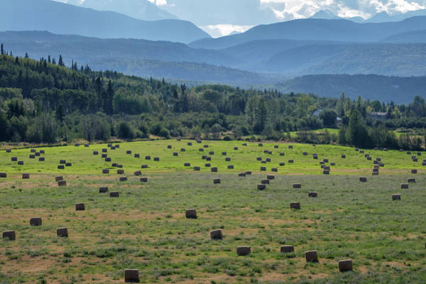 Photograph - Hay Season In British Columbia by Mary Lee Dereske