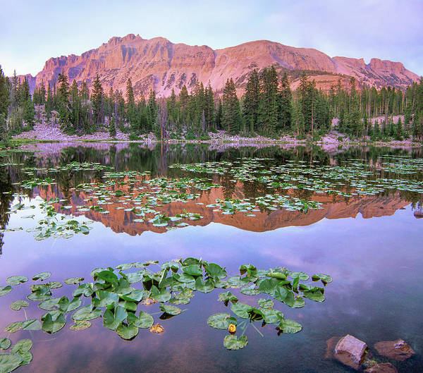 Uinta Photograph - Hayden Peak And Butterfly Lake, Uinta by
