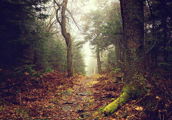 Vermont Photograph - Haystack Mountain Vermont by Matthew Stallone