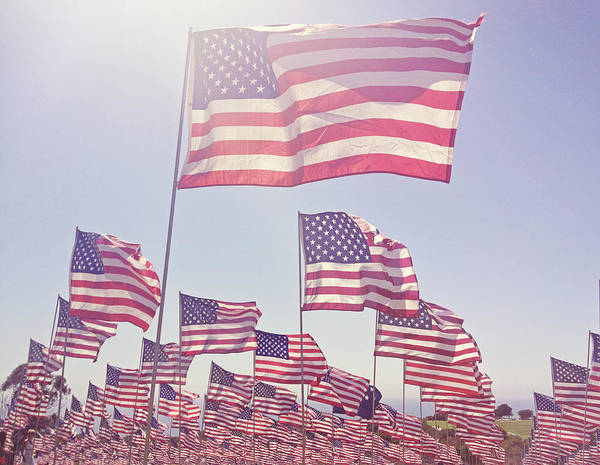 Usa Flag Photograph - Hazy Field Of Flags by Denise Taylor