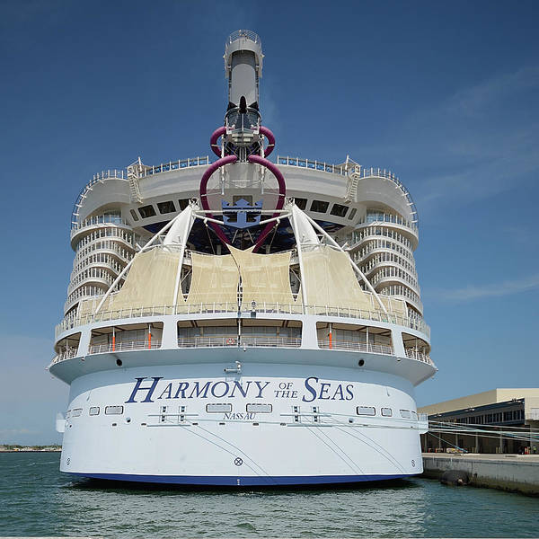 Photograph - The Harmony Of The Seas At Port Canaveral-square by Bradford Martin