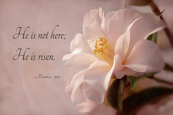 Photograph - He Is Risen by Mary Jo Allen