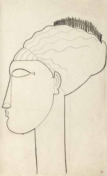 Drawing - Head In Left Profile by Amedeo Modigliani
