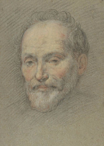 Drawing - Head Of A Bearded Man by Domenico Fetti