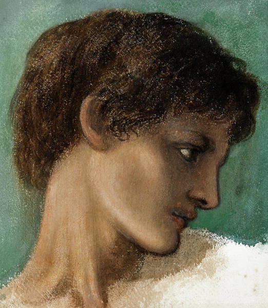 Wall Art - Painting - Head Of A Young Man by Edward Burne-Jones