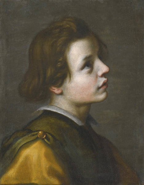 Wall Art - Painting - Head Of A Youth by Francesco Curradi