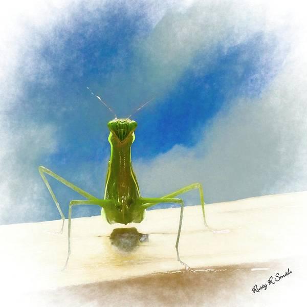 Digital Art - Head On View Of Praying Mantis. by Rusty R Smith