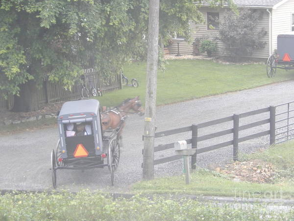 Photograph - Heading To A Sunday Gathering by Christine Clark