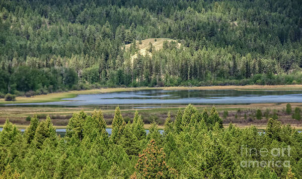 Wall Art - Photograph - Headwater Of The Columbia River by Robert Bales