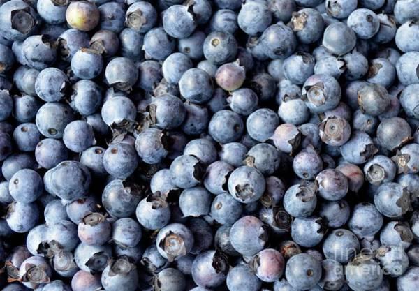 South Carolina Photograph - Heap Of Blueberries, Charleston, South by Mark Swick