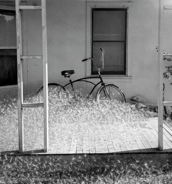 Wall Art - Photograph - Heap Of Milkweed Seeds And A Bicycle by Panoramic Images